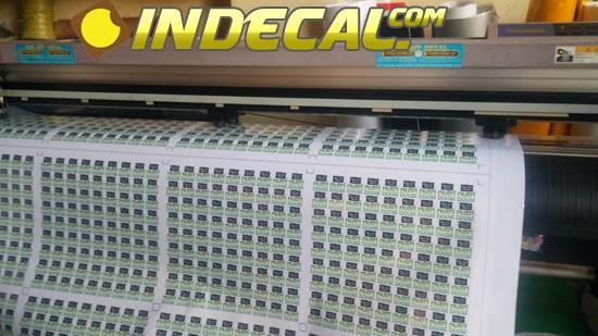Cắt bế decal chuyên nghiệp bằng máy cắt bế Mimaki FX