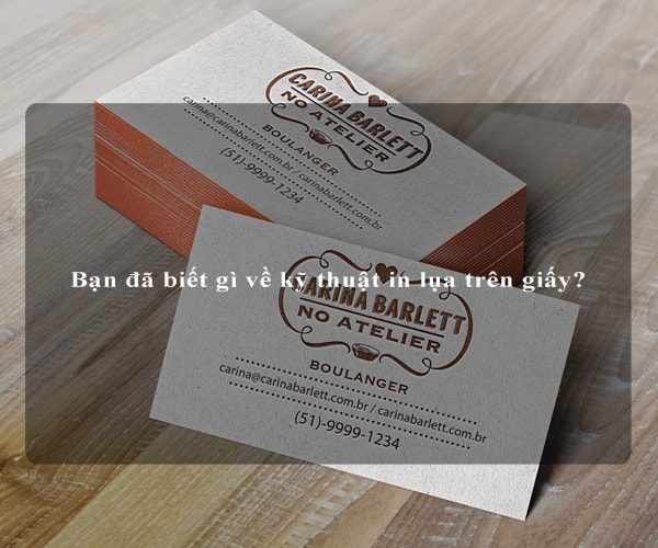Bạn đã biết gì về kỹ thuật in lụa trên giấy? 3