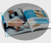 Ứng dụng công nghệ in offset trong in catalogue