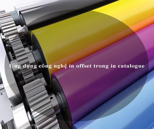 Ứng dụng công nghệ in offset trong in catalogue 3